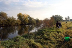 Herbstangeln-2013-14